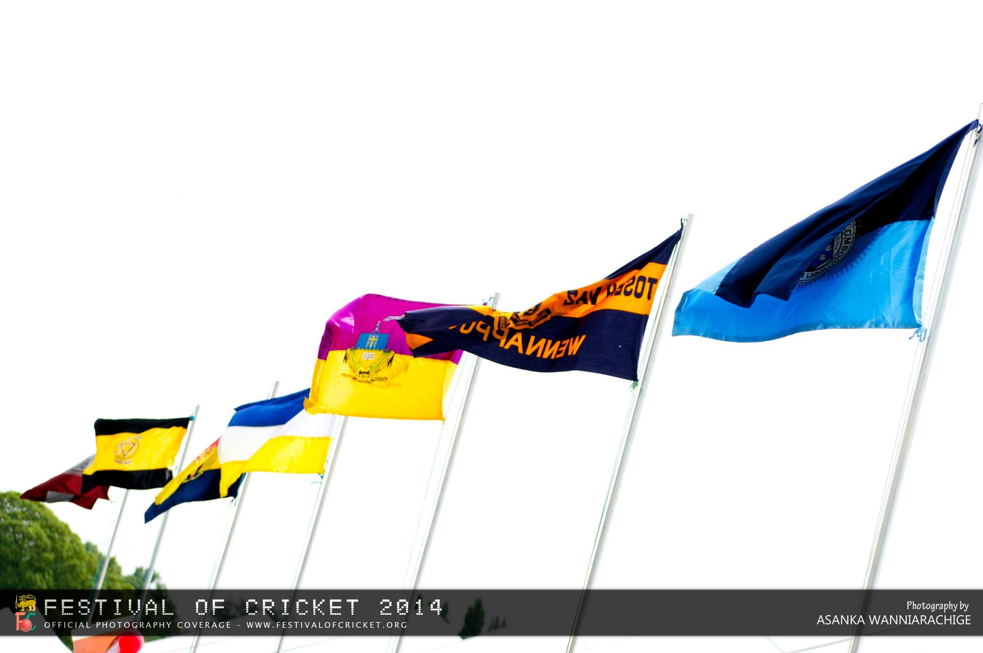 Festival of Cricket 2012