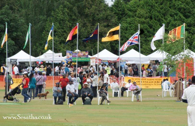 Festival of Cricket 2013