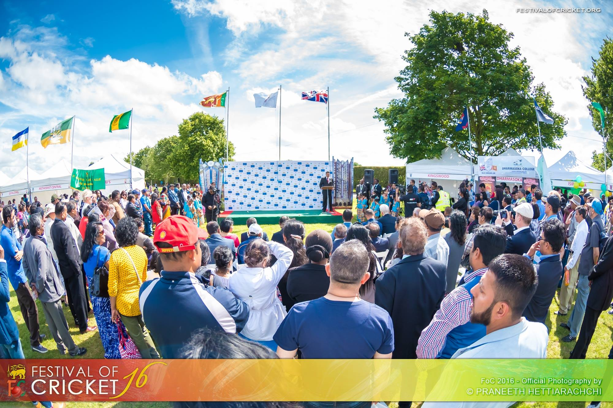 Festival of Cricket 2016